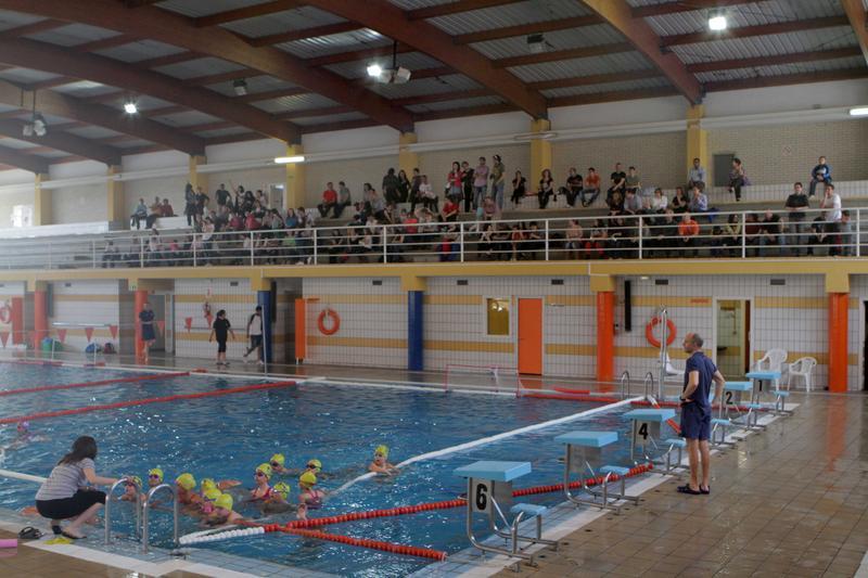El colegio consolaci n gana el campeonato de waterpolo for Horario piscina vila real