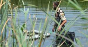 La guarderia del Consorci del Millars retira tres tortugues ex�tiques invasores de la desembocadura