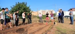 Els joves d'Espardenyers aprenen m�todes de conreu ecol�gic als horts urbans Fila 13